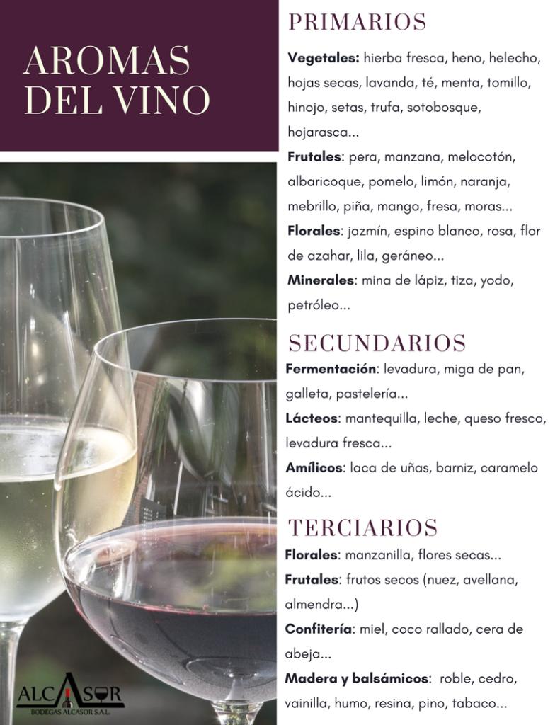 Cata de vino: aromas